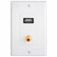 USB 2.0 Port  1 RCA/PHONO Female Gold Wall Outlet Dual Audio Socket Face Plate ABS